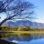 Parque La Sabana se revitaliza en la semana del voluntariado