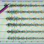 Advierten de riesgo por oleaje tras un terremoto de 7,7 grados en Papúa Nueva Guinea