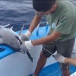 Ecuador y Costa Rica definen agenda de cooperación en pesca y acuicultura