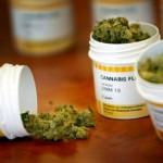 Proyecto de cannabis para uso medicinal se discutirá en sesiones extraordinarias