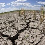 Ingreso prematuro de época seca pone al MAG a correr: sequía se extendería por seis meses
