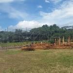 Municipalidad sanciona a Pedregal por inicio de construcción de redondel sin permisos