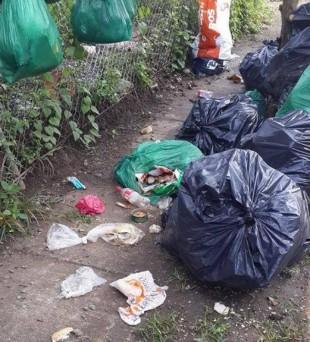 Municipalidad de Tibás busca a señora que fue grabada botando basura en vía pública
