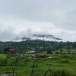 Condiciones nubladas impideron a expertos subir hasta el volcán Turrialba