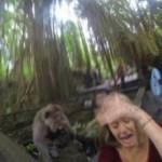 ¿Tomarse un selfie con un mono? Turista comprueba que no es tan buena idea