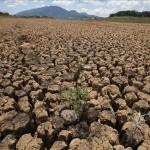 Un cuarto de la población brasileña sufre por falta de agua a causa de la sequía