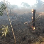 Posibilidad de un intenso veranillo de San Juan inquieta a bomberos