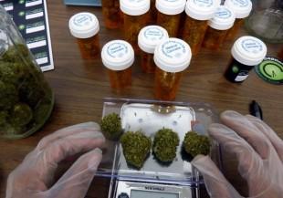 Para epilepsia o tumores: el uso de cannabis medicinal en el país lleva esperanza a muchos