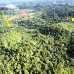 Infinito Gold debe a sus accionistas un monto mayor a lo que demandan a Costa Rica