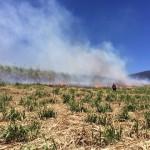 Reportan incendio en charral en Grecia, una persona requirió atención por problemas con el humo