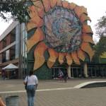 Editorial Estudiantil de la UCR busca revistas, ensayos y poesías para su publicación