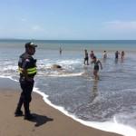 CNE emitió alerta roja en mar, luego de 12 horas de posible exposición a químico