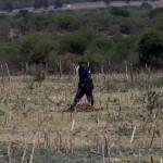 México rechaza acusaciones de abuso de fuerza en balacera que dejó 42 muertos