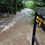 Reparación de daños a zona arqueológica del Monumento Nacional Guayabo, costarían ¢60 millones