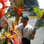 Con flores y mangos ellos tratan de ganarse el bocado y el techo cada día