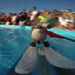 Video: La ardilla esquiadora Twiggy sorprende a todos previo a los X Games