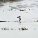 Científicos afirman que desde 1850 hay cambios climáticos sin precedentes